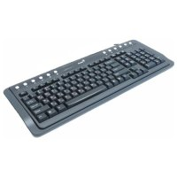 Genius KB-220 PS/2 Black Brown box