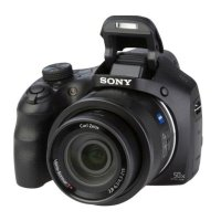 Sony Cyber-shot DSC-HX350 Black